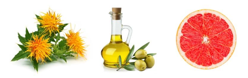Složení Bio tělového oleje