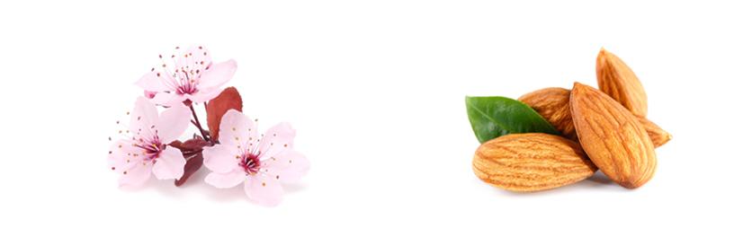 Složení krému na ruce Kneipp Třešňový květ