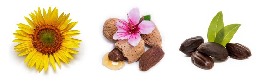 Složení masážního oleje Ylang ylang