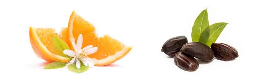 Pomerančový květ a jojobový olej jako hlavní složka sprchové pěny Kneipp Ranní polibek