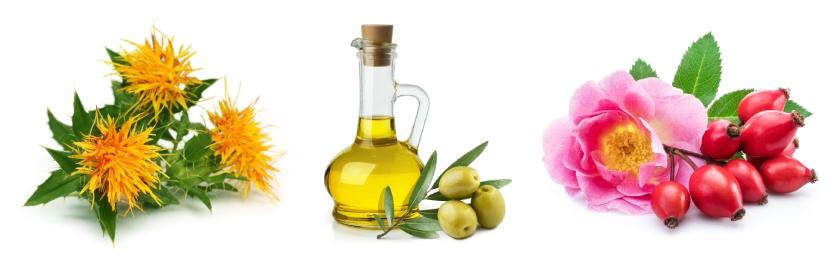 Složení tělového oleje Divoká růže