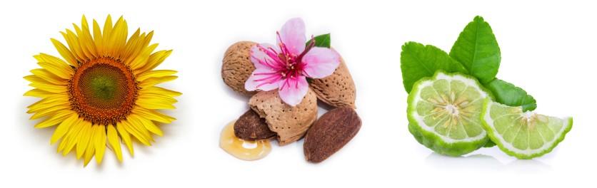 Složení tělového peelingu Mandlové květy